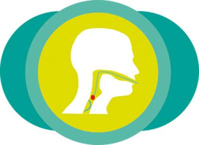 schema-deglutition-dysphagie